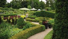 10 Beautiful Outdoor Wedding Venues in the GTA — Oudalova Events & Design Wedding Venues Ontario, Outdoor Wedding Venues, Botanical Gardens Wedding, Garden Wedding, Toronto Architecture, Italian Garden, Garden Images, Garden Features, Private Garden