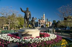 Disneyland: just curious..but what kind of chance do I actually have of getting a job here??