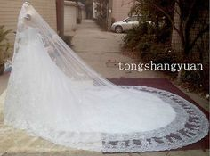 One Layer Cathedral Length Bridal Veils Lace Applique 2015 Wedding Veil + Comb