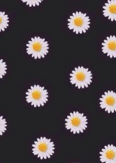 Image de flowers, daisy, and wallpaper