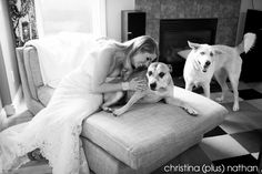 We do custom Calgary wedding photography packages for Calgary, Canmore and Banff wedding coverage. Wedding Photography Pricing, Wedding Photography Packages, Calgary, Wedding Ceremony, Backyard, Weddings, Dogs, Animals, Animales