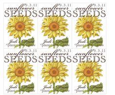 Sunflower Seed Packet Favors. $18.00, via Etsy.