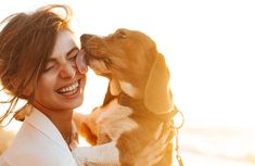 Age To Spay Or Neuter, Ovary Sparing Spay, Vasectomy, Cancer Links Coping With Stress, How To Relieve Stress, Veterinary World, Dog Travel Carrier, Joint Supplements For Dogs, Neurological System, Spark People, Liver Disease, Wellness Fitness