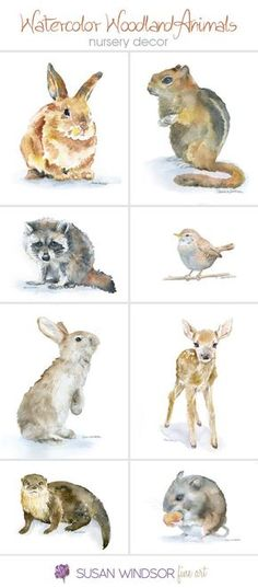 Woodland Animal watercolor prints