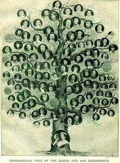 Familia arbol geneologico