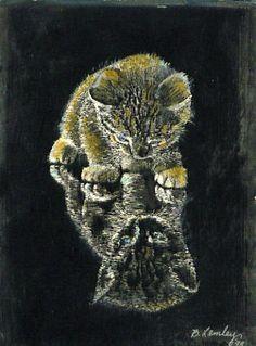 Barbara Lemleys Art Gallery http://www.blurb.com/bookstore/detail/2420978