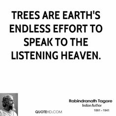 Rabindranath Tagore Quotes | QuoteHD
