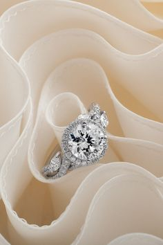 Look at these round halo rings . Beautiful Engagement Rings, Halo Engagement Rings, Halo Rings, Expensive Rings, Princess Cut Rings, Dream Ring, Diamond Design, Halo Diamond, White Gold Rings