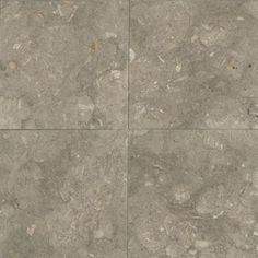 Daltile Caspian Shellstone 12 in. x 12 in. Polished Natural Stone Floor and Wall Tile (10 sq. ft. / case)-L75612121L - The Home Depot