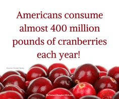 That's a lot of cranberries! Will you having any for your Thanksgiving meal this year? Like what you read?