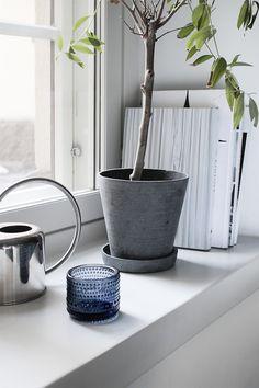 cement + plants + books + blue + silver + window | decor