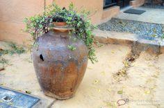 #Anadagram http://delhi-fun-dos.com/anandagram/