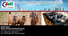 CAHE 2013 China Animal Husbandry Expo 우한 중국 가축 사료 산업 박람회