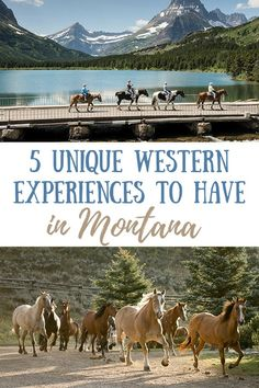 5 Unique Western Experiences to Try in Montana  #montana #travel