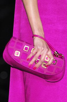 Christian Dior Fall 2008 Details