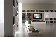library room decorating with wall mount LCD TV for entertainment