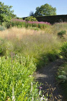 Touring Piet Oudolf's garden, Hummelo  http://thinkingoutsidetheboxwood.com