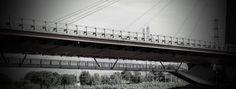 Stefano Terraglia: La ringhiera del ponte