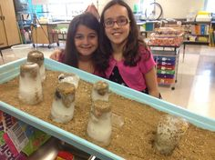 """I like this Glacial Erosion experiment the best, I love that it actually has the big """"glaciers"""" so students can see the most impact on this small scale."""