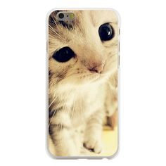 Newest Cute Melancholy Kitten Transparent Protection Cats Cover Case  for iphone 4/4s/5/5s/5c/6/6s/6plus/6s plus