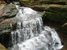 Corre el agua pura por las selvas del #Putumayo en #Mocoa. #FotoDelDia EnMiColombia.com