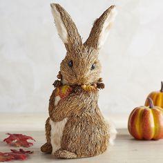 Natural Fall Rabbit | Pier 1 Imports
