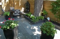 How I Rebuilt My Entire Backyard and How You Can Too! If you're an idiot that is.