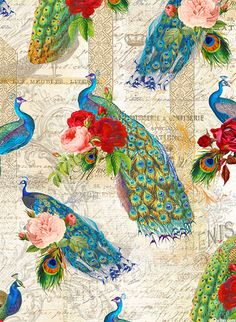 Baroque Peacock - Rose Garden Plume - Quilt Fabrics from www.eQuilter.com