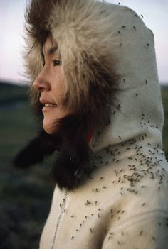 An Inuit woman wears a parka to protect herself against mosquitoes. Location: Umingmaktok, Northwest Territories, Canada. Photographer: JOHN EASTCOTT AND YVA MOMATIUK/National Geographic Stock