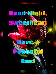 Good Night All, Good Night Love Quotes, Good Night Flowers, Good Night Sweet Dreams, Good Night Image, Evening Quotes, Night Gif, Morning Greetings Quotes, Love Images