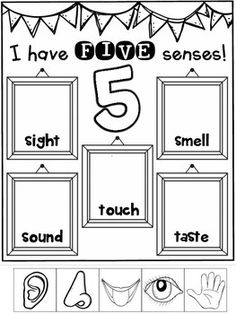 Senses FREEBIE {Science Activities} {Interactive and Engaging} {CCSS} Teaching Resources - Teaching Resources - Five Senses Kindergarten, Five Senses Preschool, My Five Senses, Senses Activities, Kindergarten Lesson Plans, Kindergarten Learning, Preschool Curriculum, Preschool Lessons, Preschool Classroom