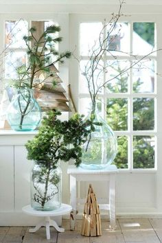 Christmas branches on glass. Photo posted by corginel - Floral Garden Ideas Christmas Branches, Noel Christmas, Christmas Inspiration, Home Decor Inspiration, Decor Ideas, Vase With Branches, Scandinavian Garden, 2017 Decor, Large Glass Jars