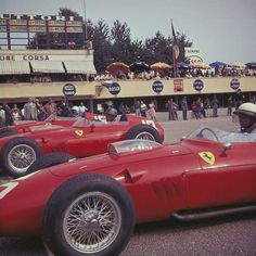 Italian GP grid Monza, September Phil Hill closest to camera in the winning Ferrari 246 Dino is Richie Ginther and Willy Mairesse in similar cars. Ferrari routed the. Ferrari Daytona, Ferrari Ff, Ferrari Racing, F1 Racing, Drag Racing, Formula 1, Sport Cars, Race Cars, Motor Sport