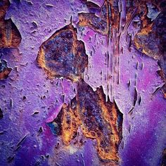 weathered world of rust, decay and texture- purple Purple Haze, Shades Of Purple, Patterns In Nature, Textures Patterns, Art Grunge, Rust Paint, Nature Artwork, Peeling Paint, Rusty Metal