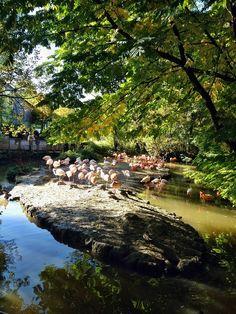 Tierpark Hellabrunn in München