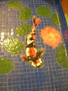 koi and lilly pads in floor