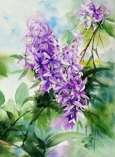 Watercolor And Ink, Watercolor Flowers, Watercolor Paintings, Watercolours, Store Displays, Flower Art, Glass Vase, Projects To Try, Purple
