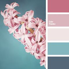 Color Palette The colours in this palette are chosen very good but they are cold although it seems very gentle but at the same time it is quite hard. Cool shade of gr. The post Color Palette appeared first on Schlafzimmer ideen. Pastel Colour Palette, Pastel Colors, Pink Color, Colour Palettes, Colours, Pink Blue, Winter Color Palettes, Gray Color, Spring Color Palette