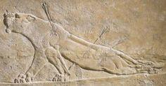 Título: Estela de la leona herida.  Autor: Desconocido.  Fecha: 668 - 626 a. C.  Estilo: Mesopotámico.  Material: Alabastro yesoso Medidas: 60 cm de altura.