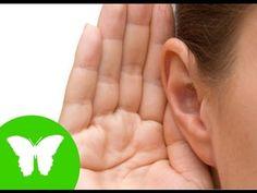 La Eduteca - Los sentidos: el oído