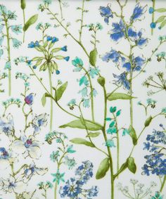 Liberty Art Fabrics Theodora D Tana Lawn | Tana Lawn by Liberty Art Fabrics | Liberty.co.uk