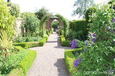 Galeria zdjęć - Ogrody angielskie - Wollerton Old Hall Garden - Ogrodowisko