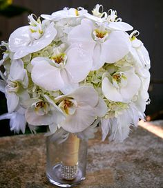 Love this orchid and feather bouquet. Perfect for vintage and 20's Glamour theme weddings. Bouquet inspiration for Koolani Florals