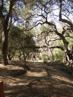 Five Of My Favorite Hikes With Great Views And Scenery In The Conejo Valley Park Hiking And