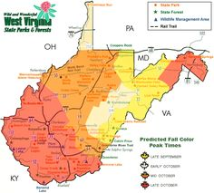 """peak fall foliage map 
