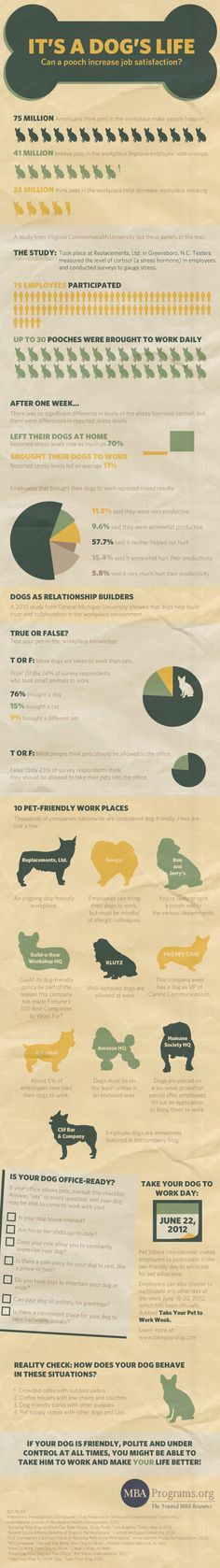 Can a pooch increase job satisfaction? According to the happy, smiling faces on both pets and people in the Petplan office, yes!
