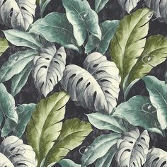Textures Texture seamless   Tropical leaves wallpaper texture seamless 20933   Textures - MATERIALS - WALLPAPER - various patterns   Sketchuptexture