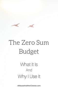 The zero sum budget prevents overspending, breaks the cycle of living paycheck to paycheck, and makes it easier than ever before to achieve your financial dreams! Get Out Of Debt, Homemaking, Read More, Are You The One, Saving Money, Things To Think About, Budgeting, Zero, Bullet Journal