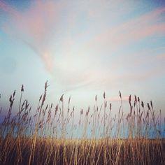 Joshua Kushner @joshuakushner Instagram photos   Websta