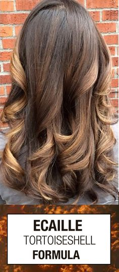 Looking for the perfect Ecaille Tortoiseshell inspired hair color formula? This gorgeous blend of browns and brondes should be created with a hairpainting or balayage technique.